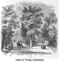 Audubon Celtic cross in Trinity Cemetery